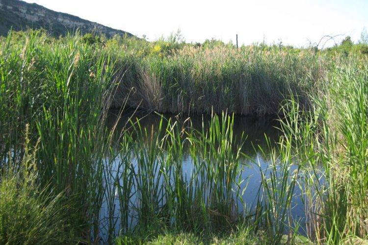 Mavrobara lake